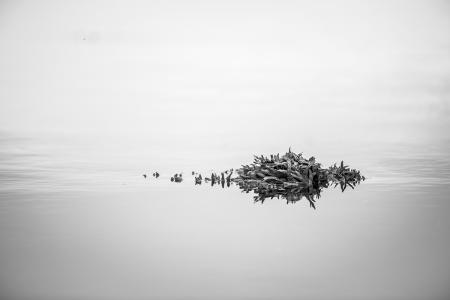 island 055