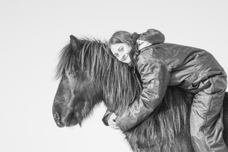 pferde__31